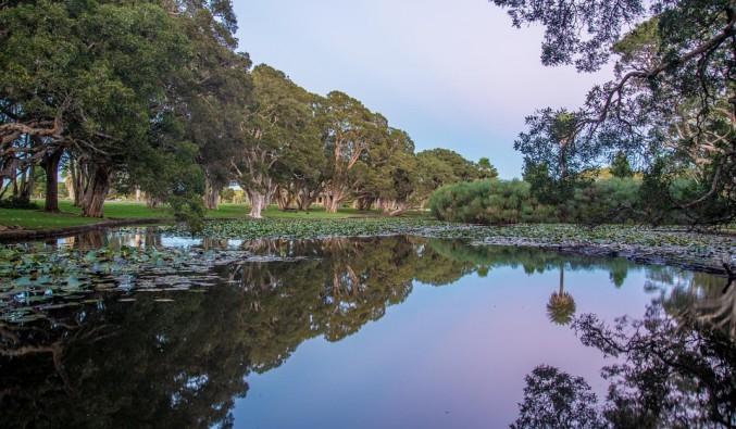 crucero-australia-centennial-park (960x640)