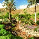 Vista del paisaje del Oasis Park. Foto Patronato de Turismo de Fuerteventura.