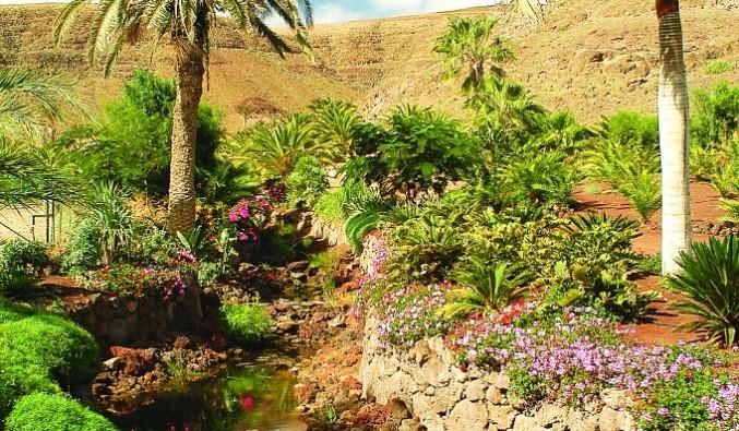 crucero-morro-jable-oasis-park