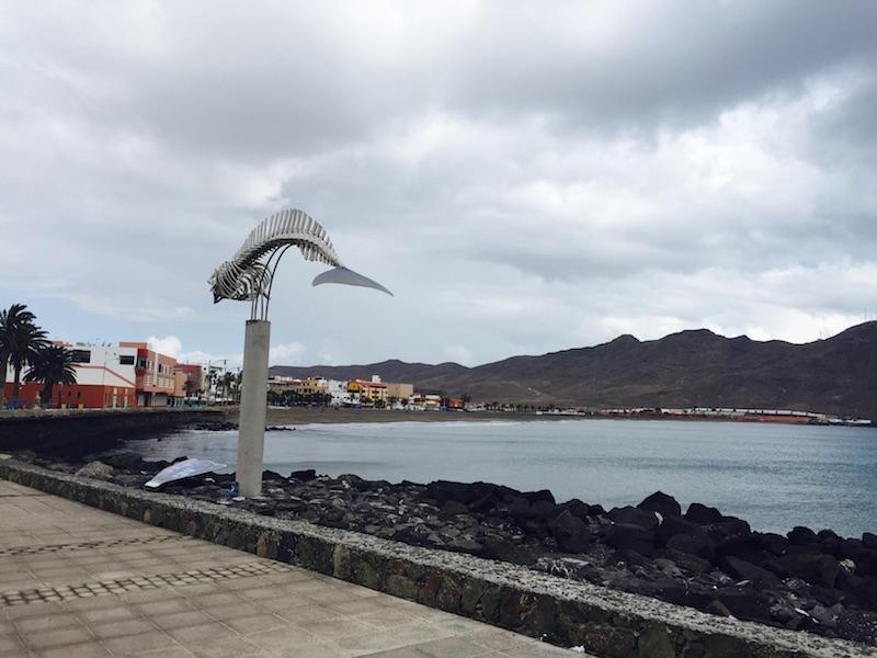 Escala de crucero en el puerto de cruceros de Gran Tarajal