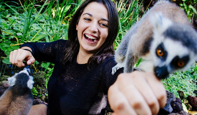 lemures-oasis-park-fuerteventura