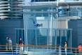 Imagen del Simulador de paracaidismo del barco Ovation of the Seas