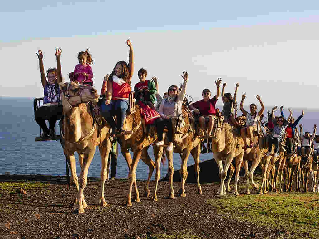 Les 10 choses que vous ne connaissiez pas sur Fuerteventura Port de Croisières de Gran Tarajal chameaux dans l'Oasis Park